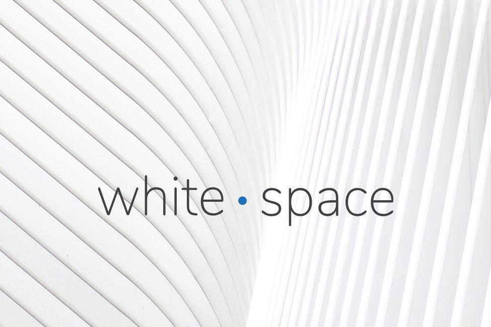 whitespace ventures case study fundsquire R&D advance