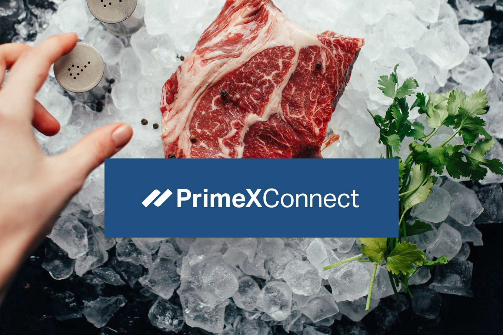 PrimeX Connect Background